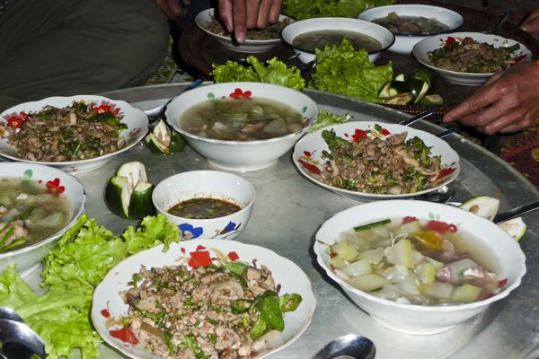 Local Food Laap in Laos Village