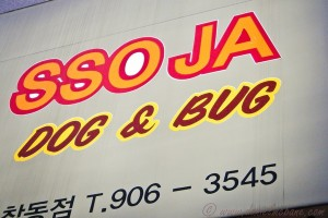 Dog AND Bug? My Kind of Restaurant…