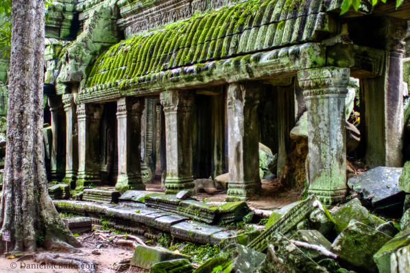 Angkor Temple Covered in Moss