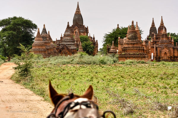 Seeing the temples of Bagan by horse cart