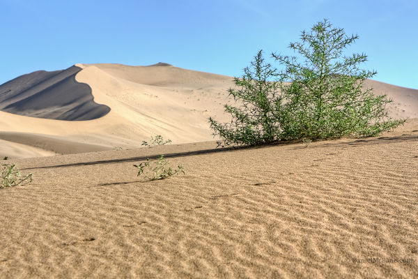 Mingsha sand dune in Dunhuang, Gansu, China