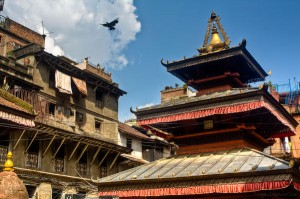 Bird flying above a temple in Kathmandu Nepal