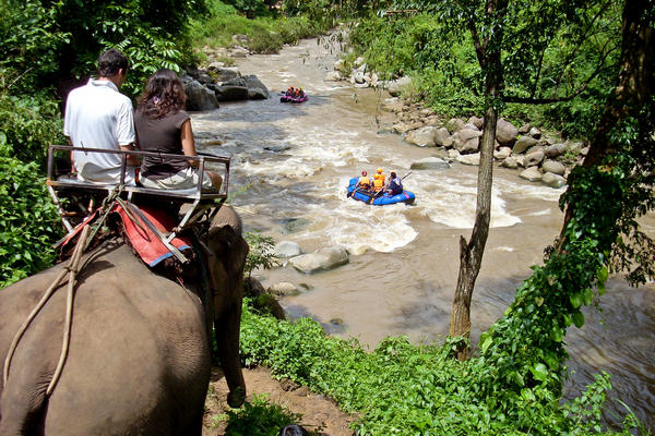 Riding an elephant and whitewater rafting in Thailand