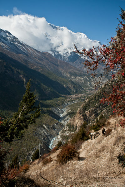 Manang valley in Annapurna, Nepal