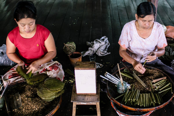 Woman hand rolling cigars on Inle Lake in Myanmar
