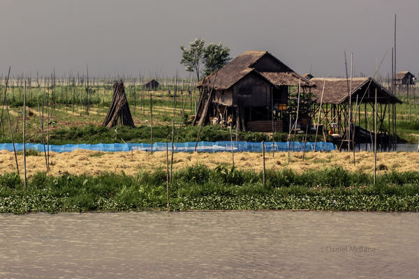 A vegetable garden on Inle Lake in Myanmar