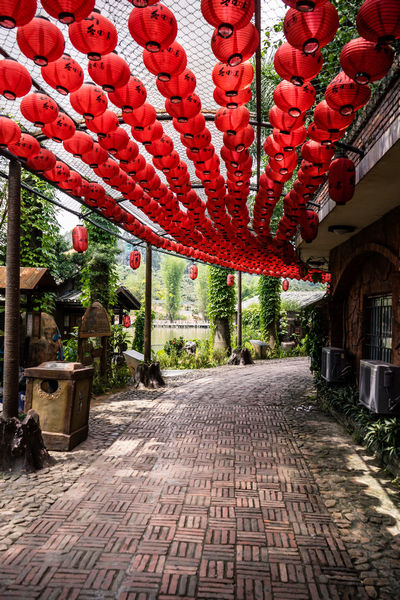 Red lanterns over a lakeside path in Shenzhen China