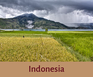 Indonesia Funny Travel Stories