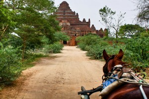 Horse cart approaching a temple in Bagan
